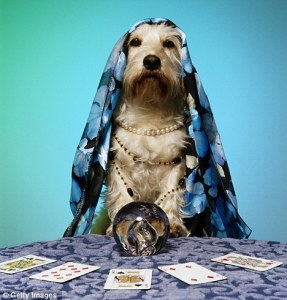 dogpsychic