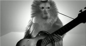 MONKEY GUITAR
